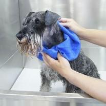 Bayeta extra absorbente para secar perros