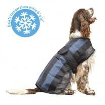 Chaleco Ibáñez Instant Fresh refrescante para perros - 12 grados