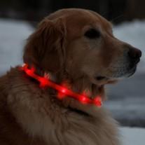 Collar luz led recargable USB para perros collar seguridad 500m alcance