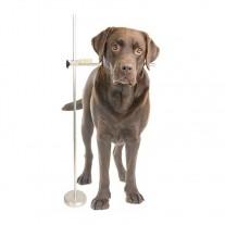 Medidor profesional de perros y gatos para exposiciones caninas y criadores
