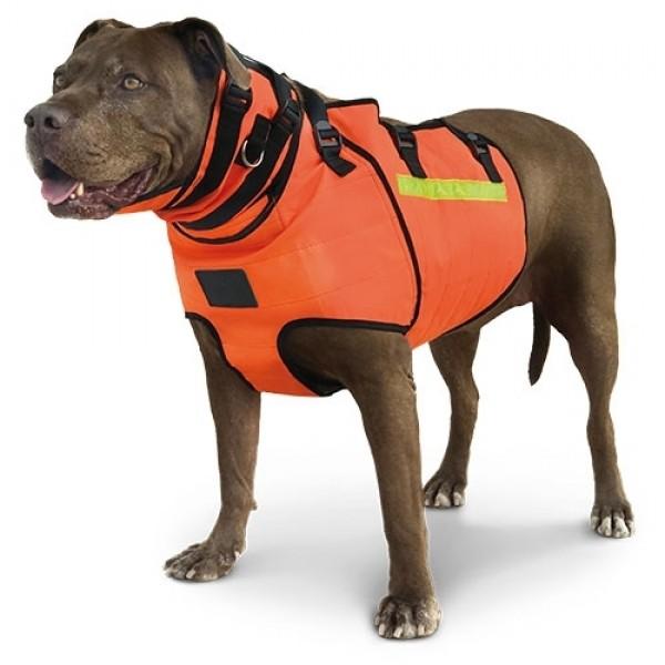 Chaleco protección perros de caza jabali  ÉLITE BULWARK